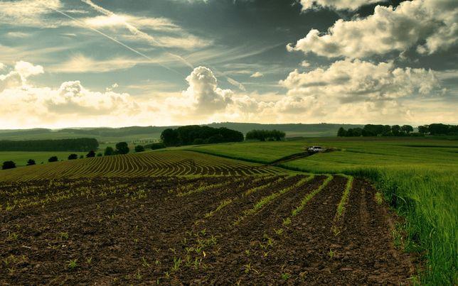 Продам земельный участок,бизнес,сельхоз