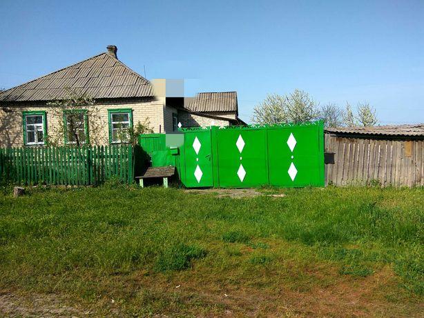 Продается дача, дом, отличное место для пчеловодства.