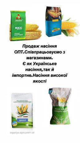 Кукурудза насіння/ОПТ