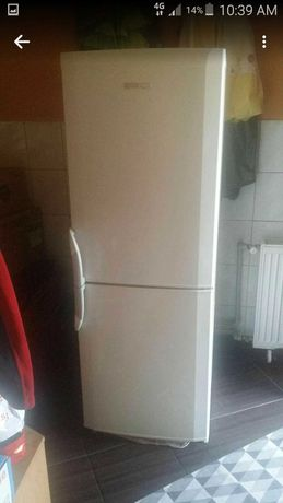 Lodówka Beko wysokosc 155cm