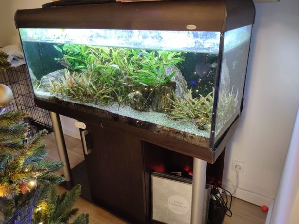Akwarium 160L, oświetlenie LED, filtr wew., szafka