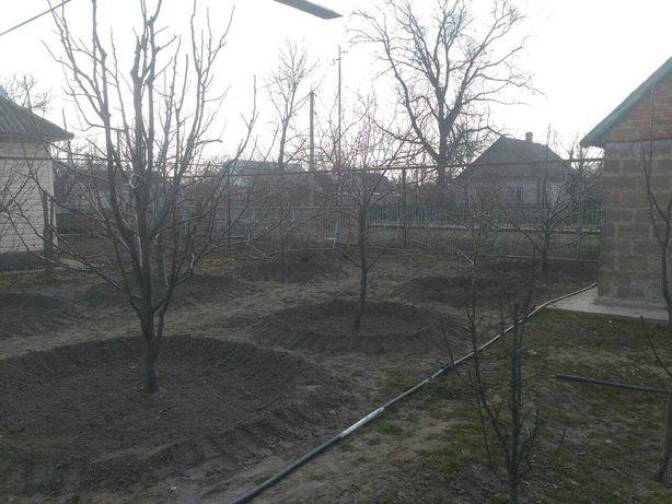 Дом с. Лысогорка
