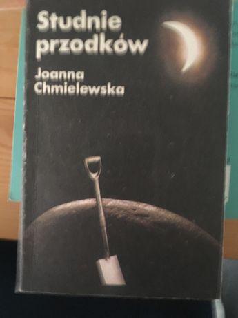 Joanna Chmielewska - studnie przodków