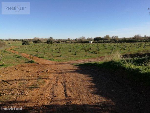 Fantástico terreno Localizado em Vilamoura com cerca de 9...