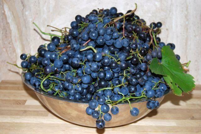 Sok z ciemnego winogrona
