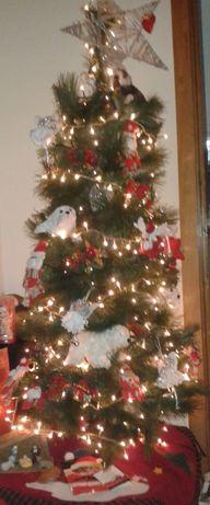 Árvore de natal sem enfeites