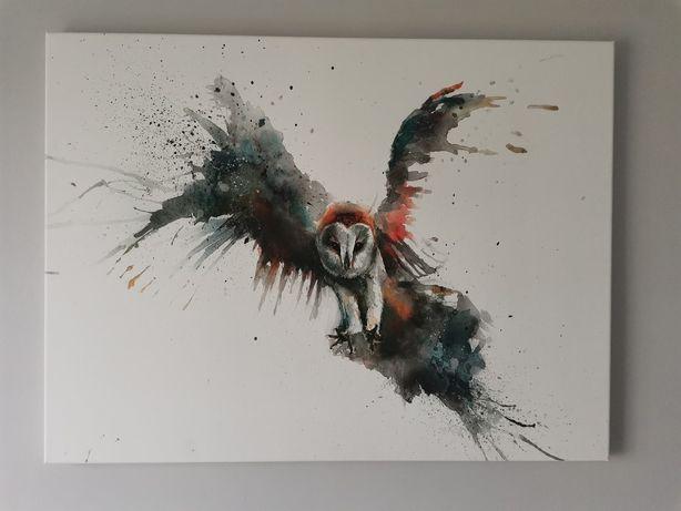 Obraz na płótnie latająca sowa