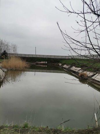 Продам участок с озером  во дворе 35 соток , дом узаконен, 50000у.е.