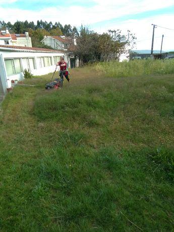 Manutenção jardins/ espaços verdes