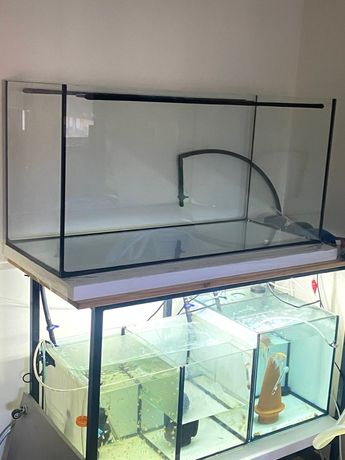 Aquarios com estrutura