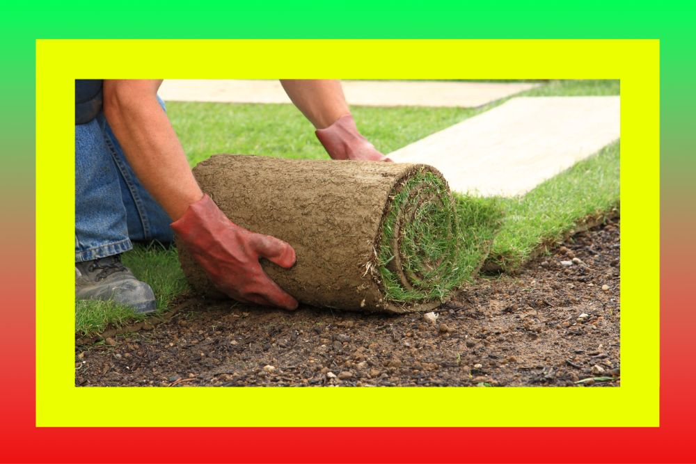 Укладка рулонного газона (и посевного) под ключ в Днепре и области