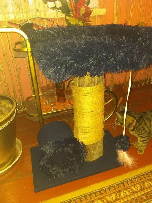 Drapak domek dla kota Wójcice - image 1
