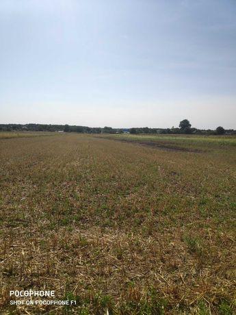 Продам ділянку для ведення особистого селянського господарства 0,15га