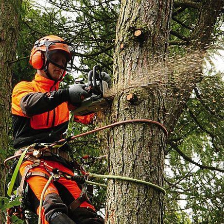 Зрізання,Обрізка.Валка небезпечних дерев.Висотні роботи.