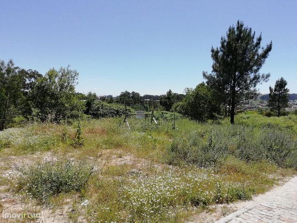 Agricultural land/Land em Porto, Paredes REF:785