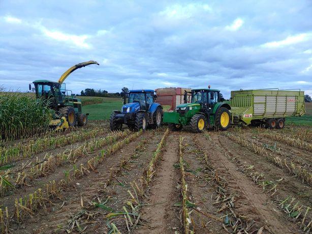 Koszenie kukurydzy (usługi Rolnicze)