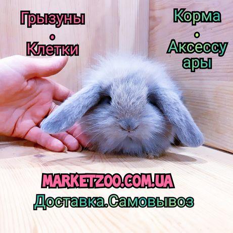 Карликовые миниатюрные декорат торчеухие и вислоухие кролики и клетки