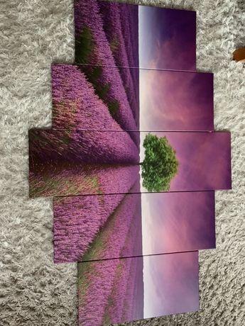 Obraz 150x100 cm 5 części pole lawendowe