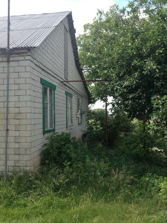 продам дом царичанский район
