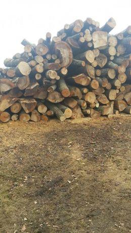 Drewno drzewo do kominka I do pieca. Serdecznie polecam!!!