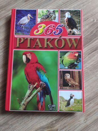 365 ptaków książka naukowa