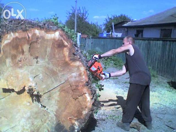 Cпил деревьев и садово-земельные работы