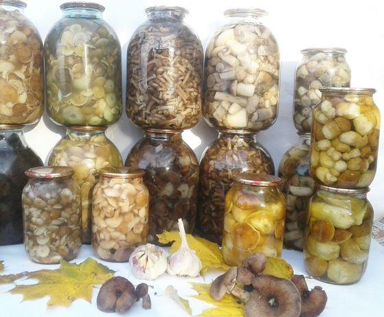 Білі гриби, опеньки, маслята, підосиновики. В наявності також є сухі.