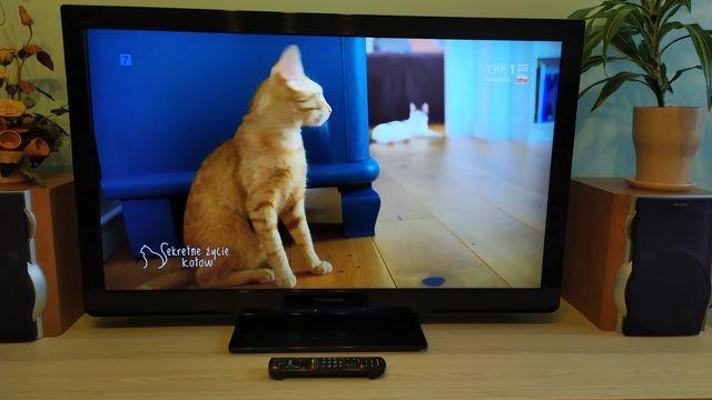 Telewizor LCD Panasonic 42 całe.