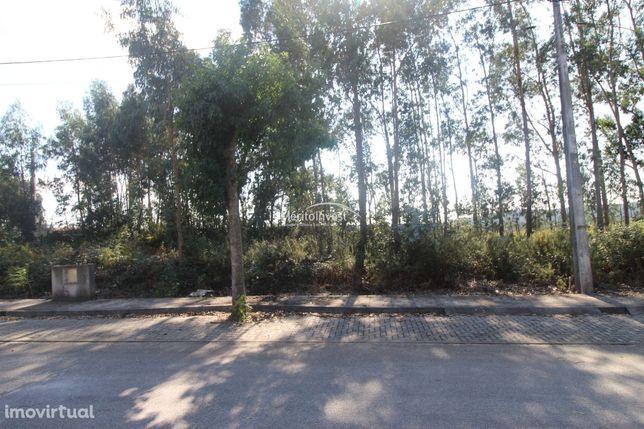 Terreno constituído por dois lotes para construção de moradias geminad