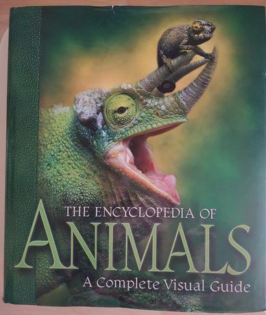 Encyklopedia zwierząt w języku angielskim.