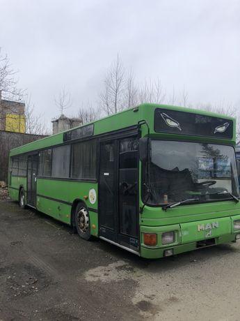 Neoplan n202  ідеал