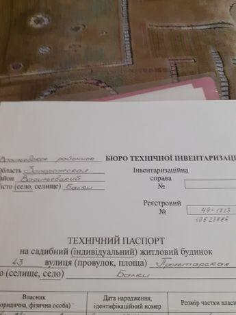 Дом в селе Балки Васильевского района