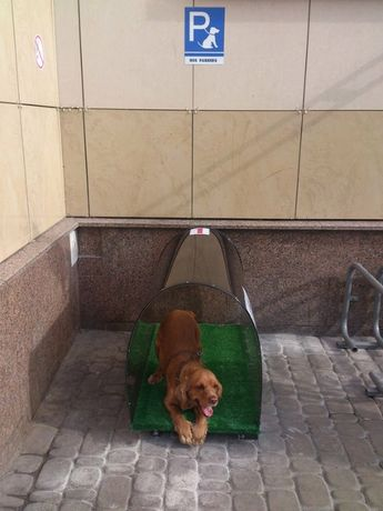 Парковка для собак у вашего магазина!