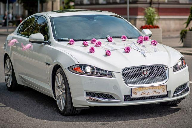 Auto do Ślubu samochód na Wesele Ślub limuzyna biała perła Jaguar XF