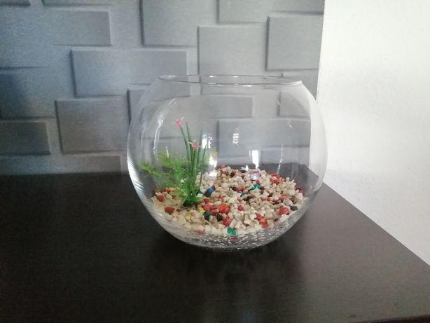 Akwarium typu kula