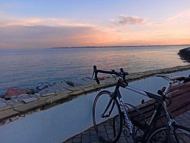 Шоссейный велосипед, шоссейник