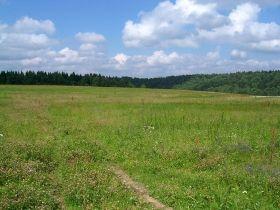 Продам земельный участок в Васильковском р-не (Марьяновка)