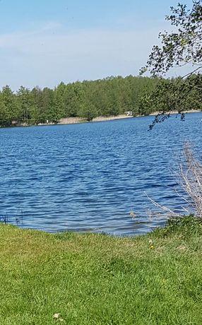 Sprzedam działkę przy samym jeziorze - Skoki Duże