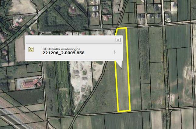 Sprzedam działkę 1,71 ha w Kobylnicy