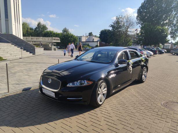 Auto samochód do ślubu do wynajęcia na imprezy JAGUAR XJ wersja Long