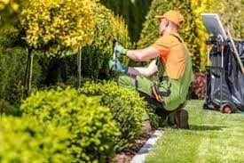 Обслуживание участков, Садовник, Декоративная стрижка растений, топиар