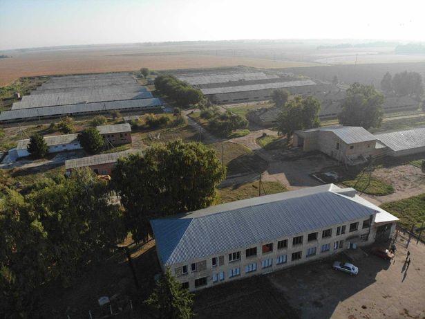 Продам свинокомплекс  в Полтавській області 26 га землі