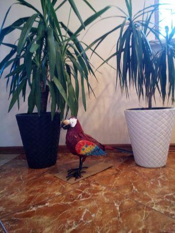 Ptak ozdoba