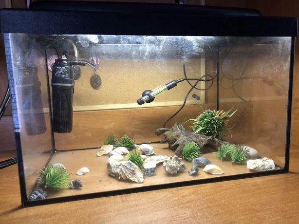 Akwarium z filtrem i grzalka