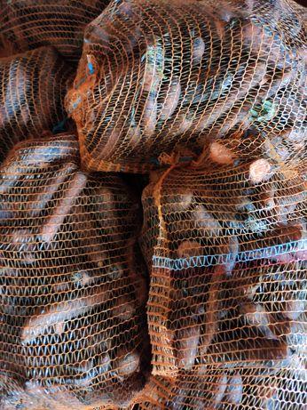 Marchew paszowa, odpadowa, 2 gatunek