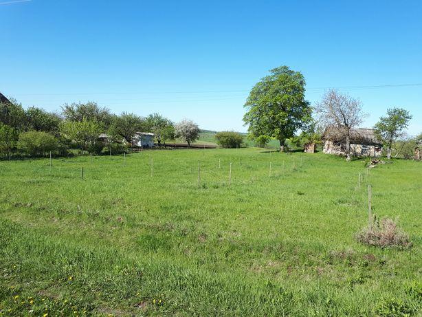 Терміново Лаврів продам 2 земельні ділянки, загальною площею  51 сотка