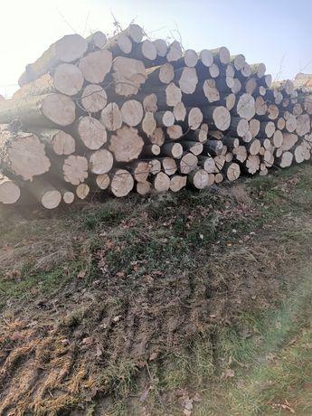 Drewno kominkowe i opałowe twarde