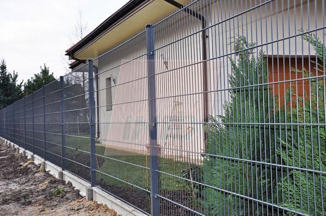 Panel 2D 656 wysokość 143 Ogrodzenie panelowe panele ogrodzeniowe