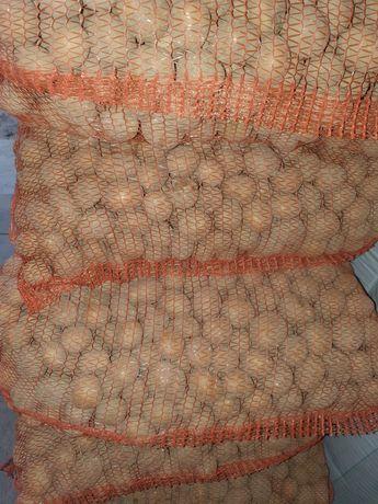 Ziemniaki sadzeniaki Vineta --Bellarosa--