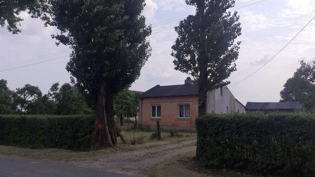 Wynajem domu w miejscowości Siemienice